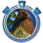 perch-plunge