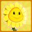 sun-heals